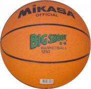 Basketballs Official Size 5